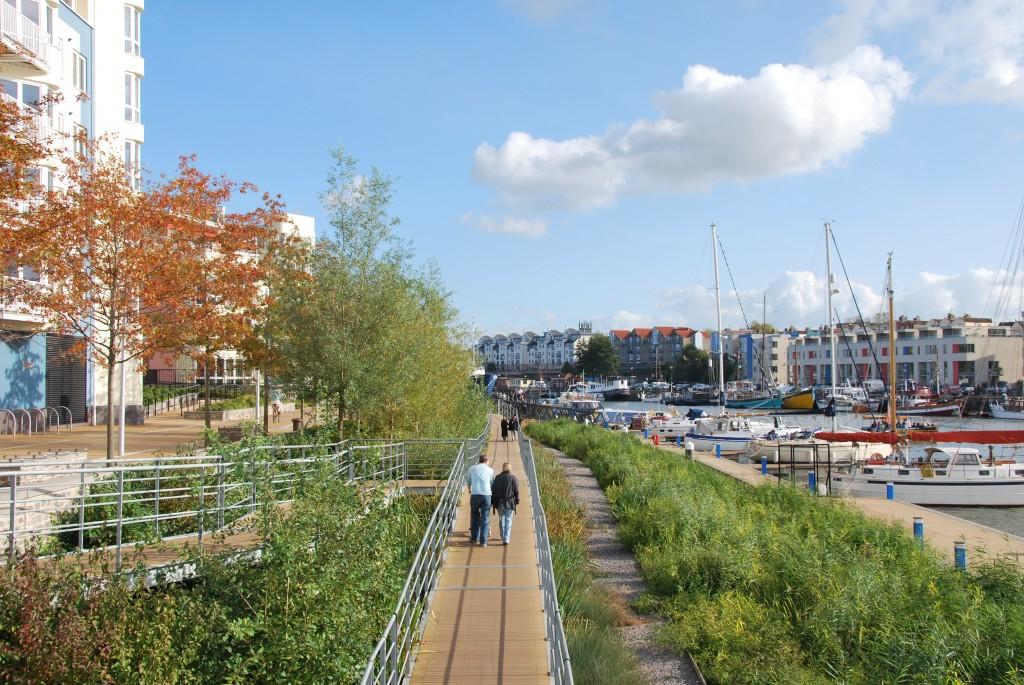 Bristol (6)