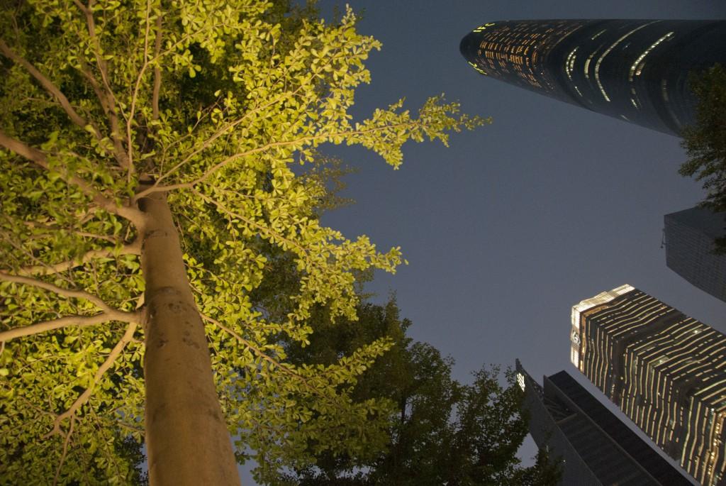 Guangzhou (3)